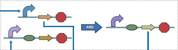 File:PKU Module1-up.png
