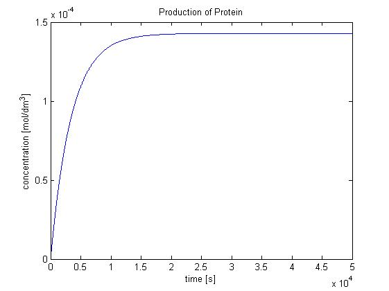 Image:Protein production.jpg