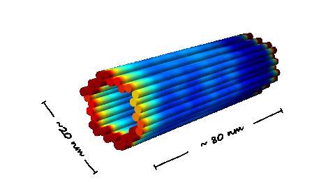 File:BIOMOD Nanopill 2.png