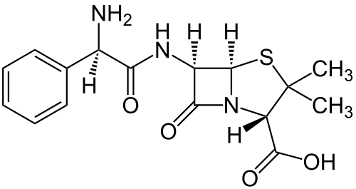 The structure of ampicillin, including the central beta-lactam ring cleaved by the ampR gene product Ampicillin on Wikipedia