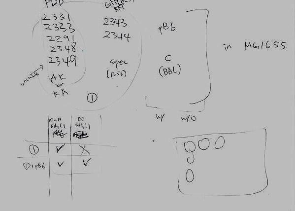 File:Jin Notes1.JPG