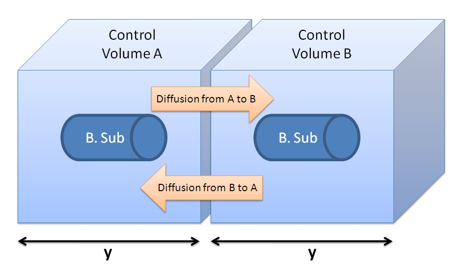 Figure showing 2 cells with their control volumes.