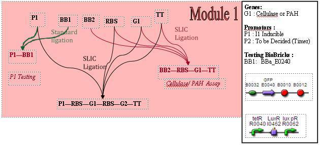 File:M1cs.jpg