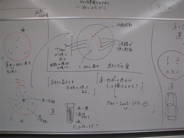 File:Chi 20090901 1.jpg