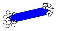 File:Macintosh HD-Users-nkuldell-Desktop-M13K07 plasmid-phageparticle.jpeg
