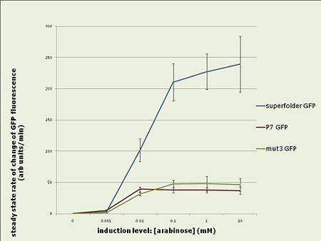 In vivo rates 1.jpg