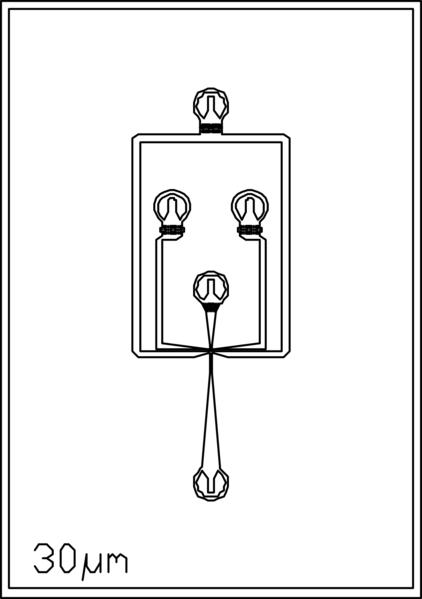 File:30um 4 inlets.png