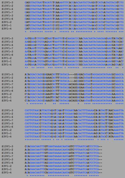 File:AIDSDiagnosedV1SA DNA.png