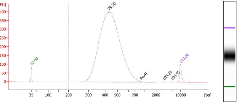 File:YP1 bioanalyzer.PNG