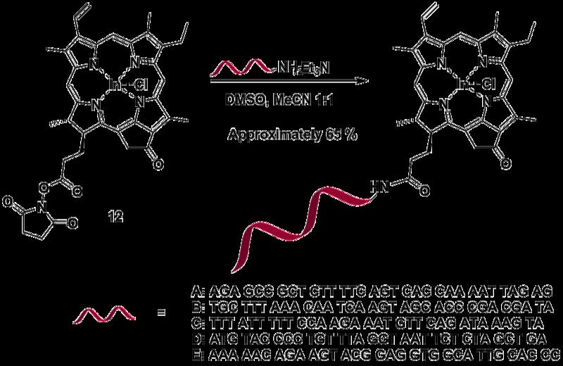 File:Biomod Aarhus Chem PhotoDNA.png