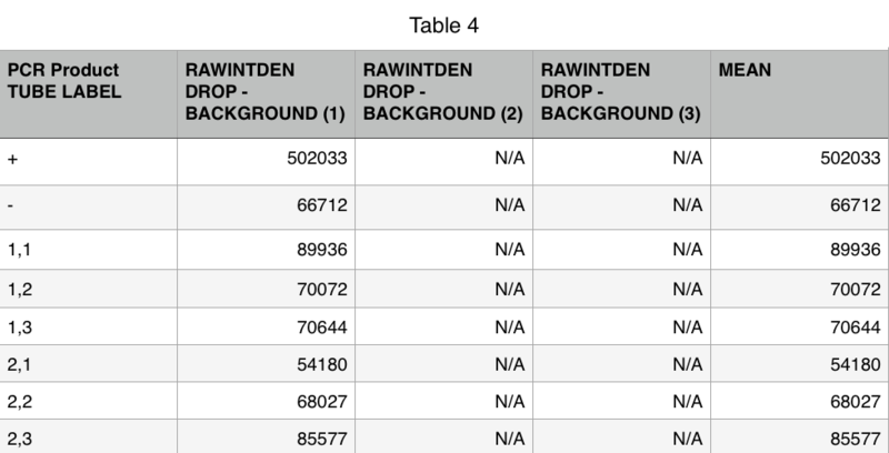 File:Table 4 Group 12 PCR.png