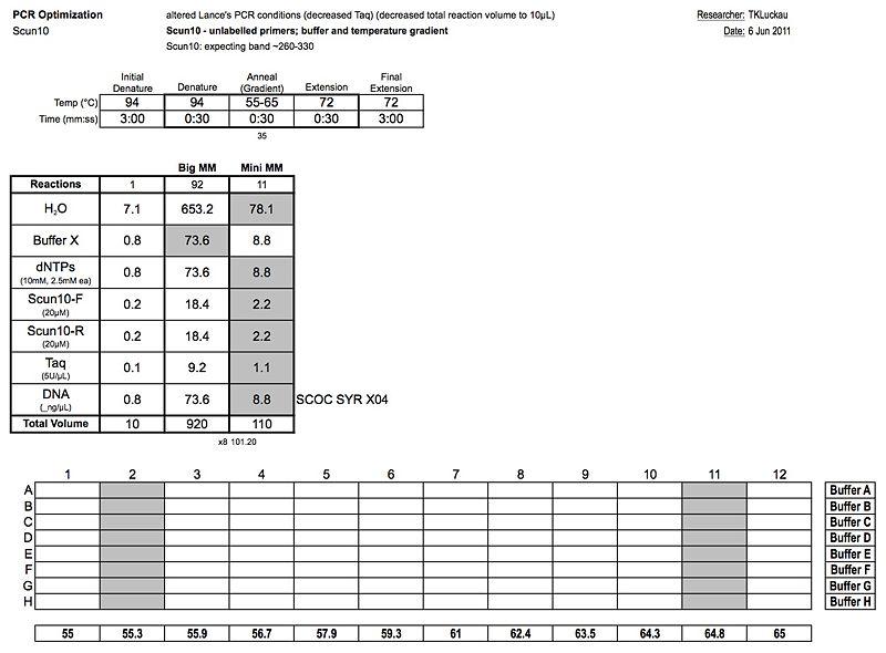 20110606 PCR.jpg