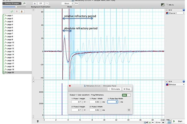 Lab 9 conduction velocity of nerves openwetware frog rp for manualg fig 95 compound action potentials ccuart Choice Image