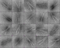 Thumbnail for version as of 21:42, 2 November 2011