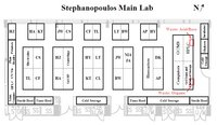 Stephanopoulos Main Lab (jpg,ppt)