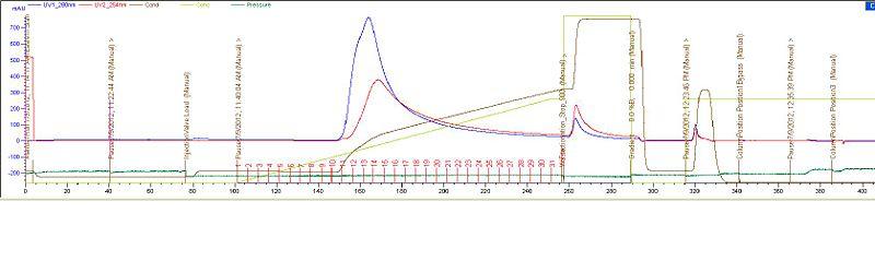 File:Purification graph 070912.JPG