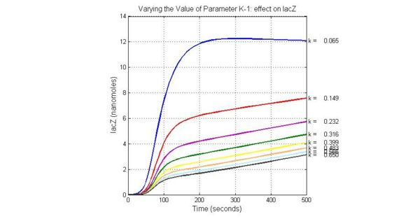 Fig.5 Varying the Value of Parameter K-1 effect on lacZ