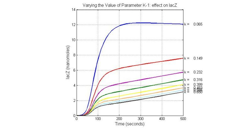 File:Varying the Value of Parameter K-1 effect on lacZ.jpg