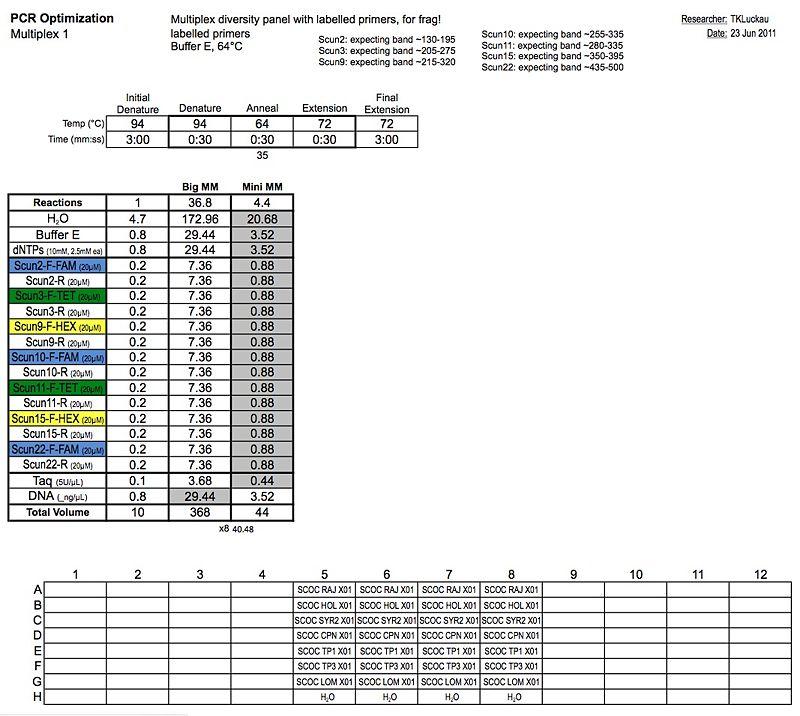 20110623 PCR2.jpg
