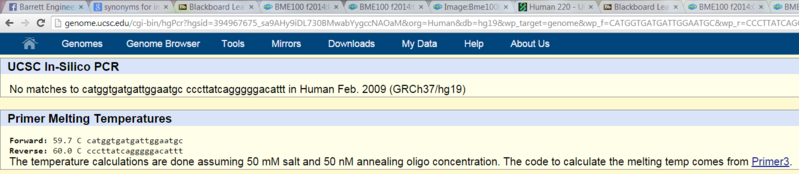 File:Bme100diseasespecificprimergroup25.PNG