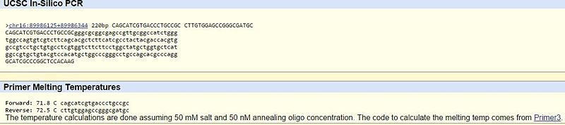 File:BME100 G81030AM PRIMER HELL 1.JPG
