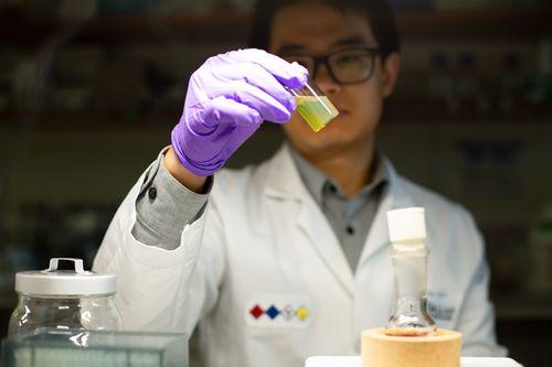 Qin Lab 6.jpg
