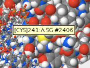 Figure 2: This sulfur atom is part of cysteine at position 241.