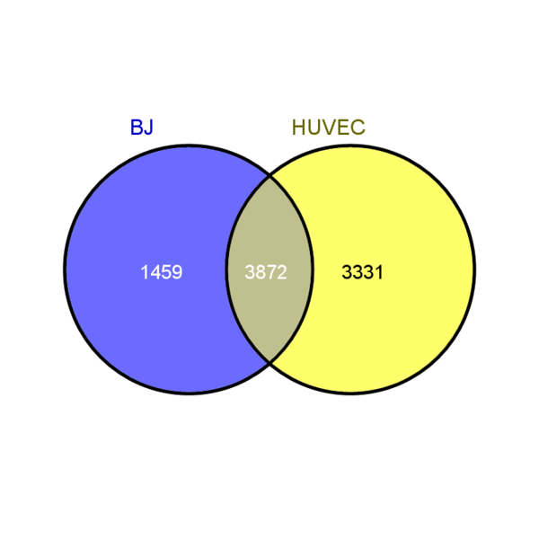 File:Venn Diagram PICTURE BJ and HUVEC.png