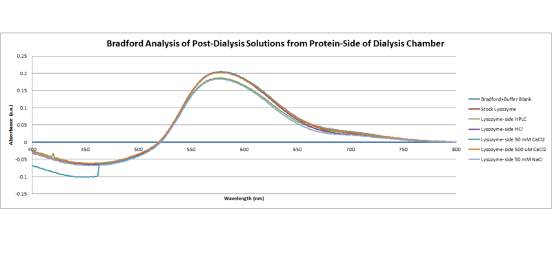 Image:Bradford Analysis of post dialysis solutions from protein side of dialysis chamber.png