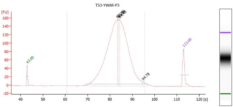 File:Bioanalyzer YWAR P3.PNG