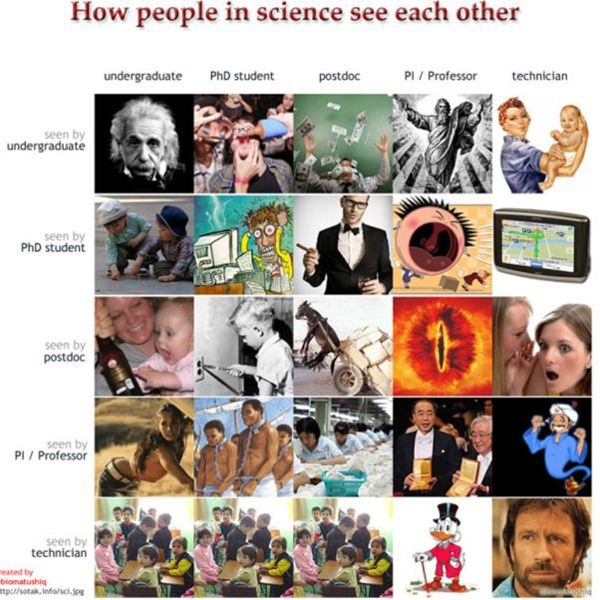 File:How people in science see each other.jpg
