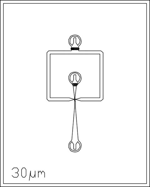 File:30um 2 inlets.png