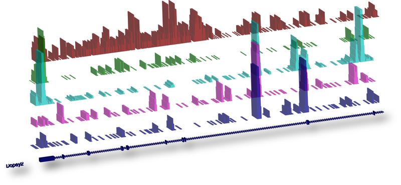 File:GenomeLandscape.jpg
