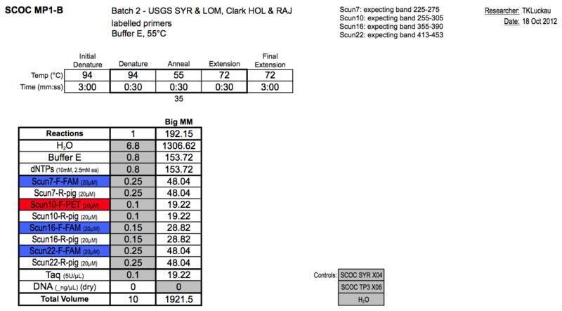 File:20121018 PCR.png