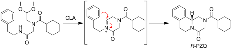 File:PZQ PS Synthesis Intro.png