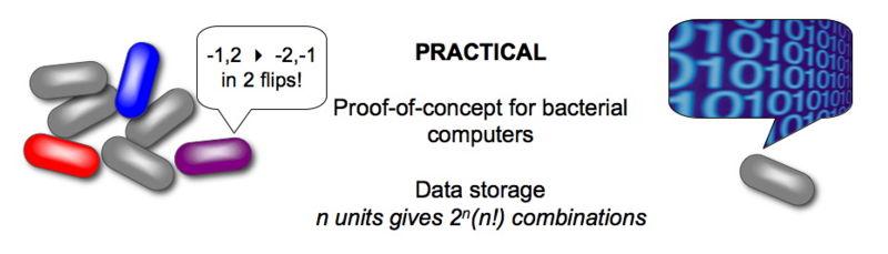 File:Dc practical.jpg