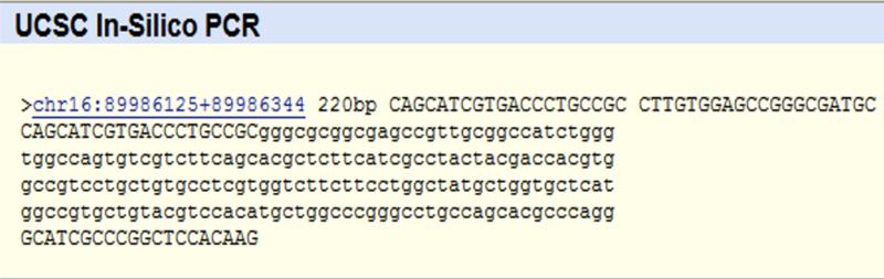 File:PCR-result1.png