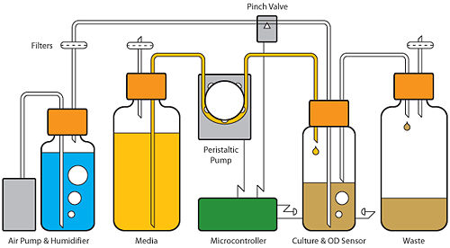Diagram of the Evolvinator. A microprocessor controls the flow of media to the culture based on OD readings. Humidified air is provided via an air pump as mediated by a pinch valve.