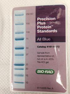 Precision Plus Protein.jpeg