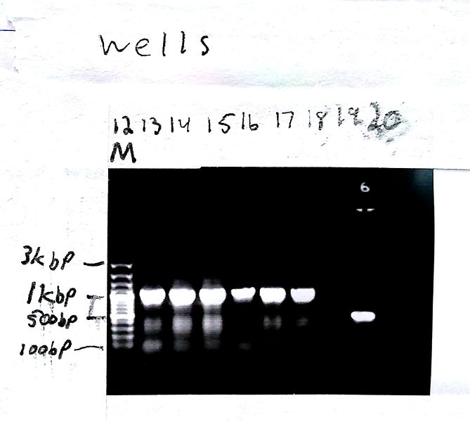 File:2012-10-04 15-47-40 419.jpg