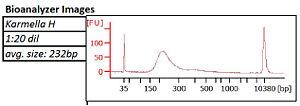 KAH040413 bioanalyzer.jpg
