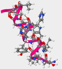 Figure 2.Alpha helix secondary structure formed by amino acids in positions 105-117 in hOGG1 protein