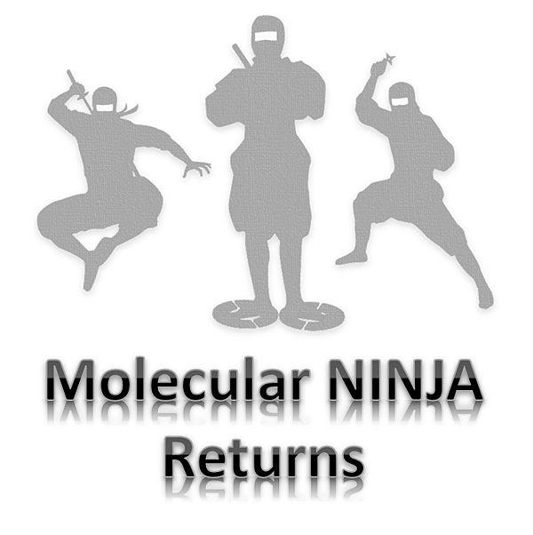 Molecular NINJA Returns.jpg