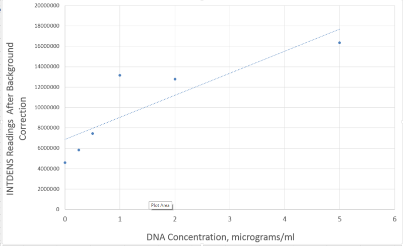File:DNA Graph.png