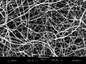 SEM image of PLGA fibers.