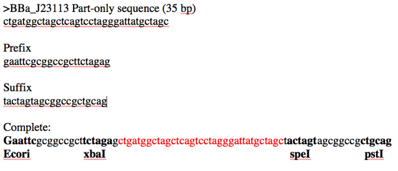 Image:Low promoter sequence.png