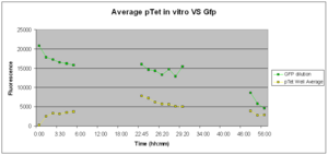 Fig.2: GFP Expression of pTet-GFP in vitro at 37°C over 56 hours