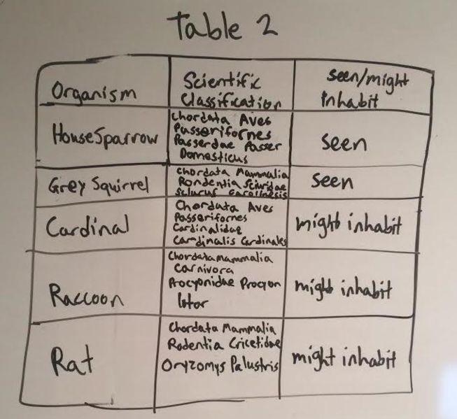 File:Vertabrate table.jpg