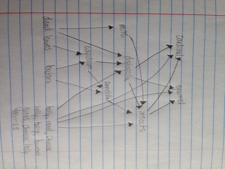 File:Food Web Transect 3.JPG