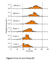 Fig. 3 from the PRL.  Orange bars are histograms of 449 total unbinding events.  Dashed curves are maximum likelihood fits of the PDF from Evan Evans' DFS model, each fit to a single rate.  Solid lines are PDFs from a single best fit for all rates.  Vertical dashed bars represent unaccessible ranges to our experiment.
